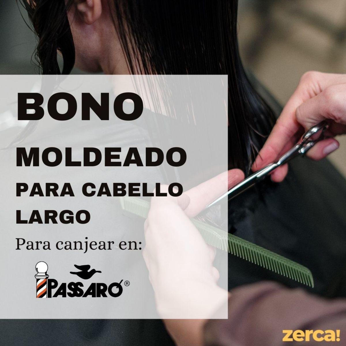 Bono moldeado cabello largo PARA CANJEAR EN PASSARÓ PLAZA SAN BRIZ