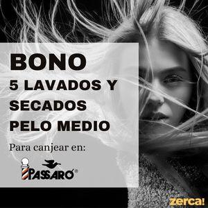 Bono 5 servicios lavado secado media melena para canjear en Passaró Magaly