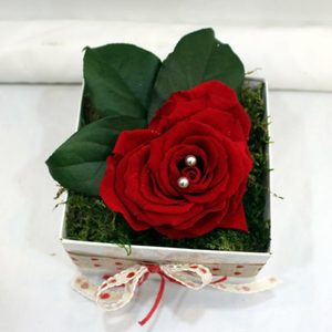 Corazón de pétalos de rosas preservadas