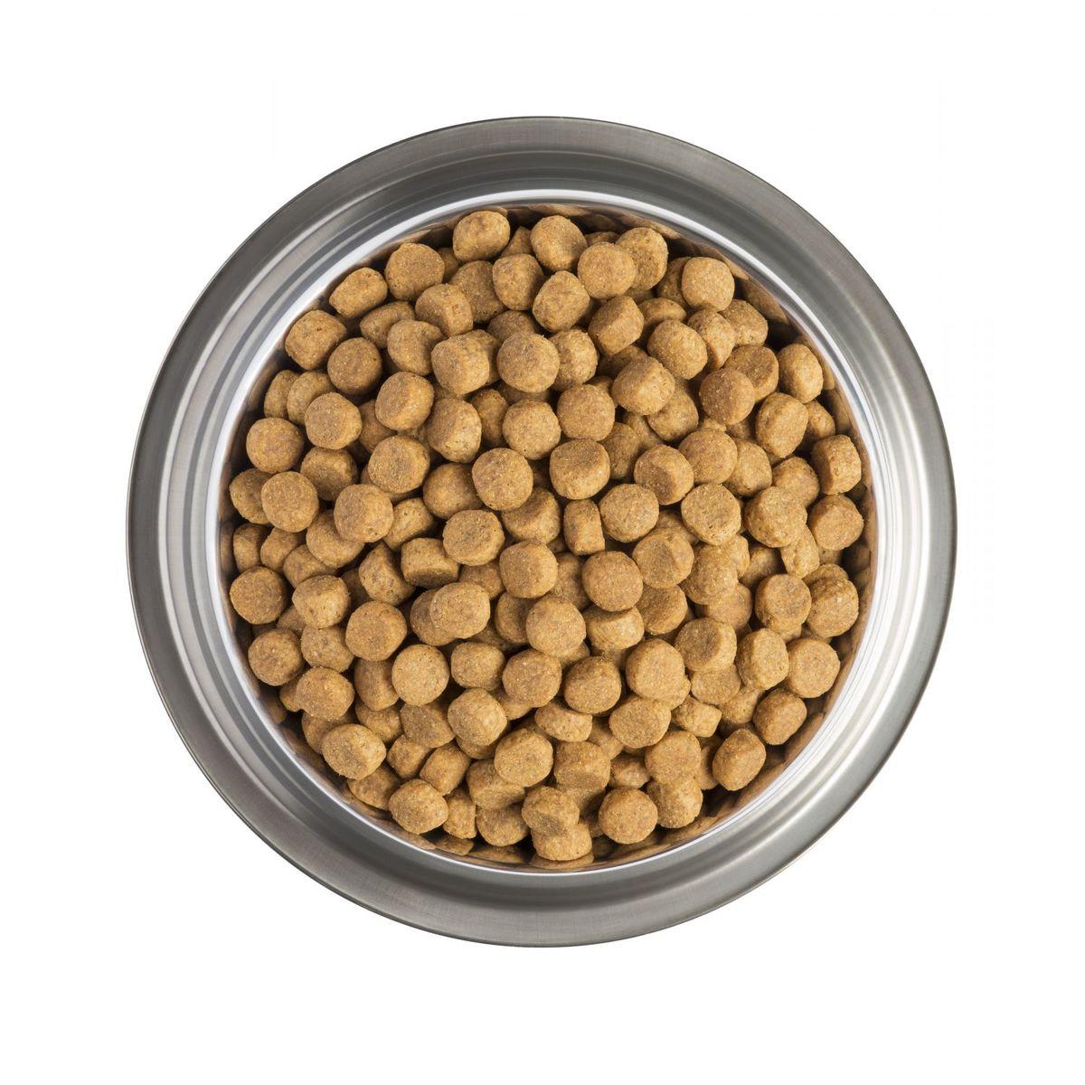 Pro Plan veterinary diets Perro JM movilidad