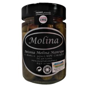 Encurtidos Molina Banderilla Picante
