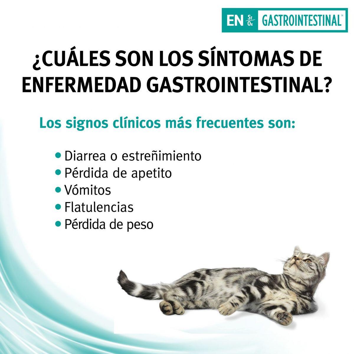 Pro Plan veterinary diets Gato EN gastrointestinal