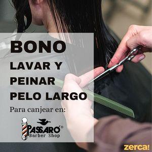Bono lavar y peinar cabello largo PARA CANJEAR EN PASSARÓ PLAZA SAN BRIZ