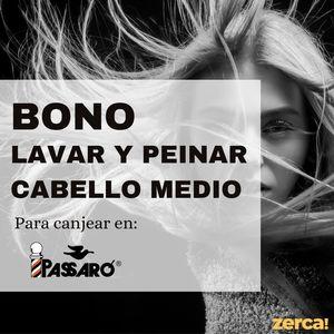 Bono lavar y peinar cabello medio PARA CANJEAR EN PASSARÓ PLAZA SAN BRIZ