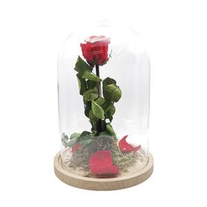 "Cúpula rosa encantada ""Bella y Bestia"""