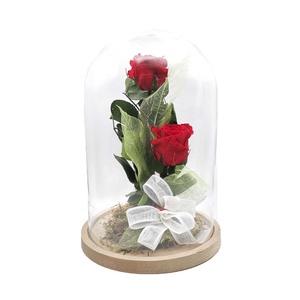 """Cúpula con dos rosas preservadas """"2XL"""""""