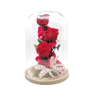 """Cúpula con tres rosas preservadas """"3XL"""""""