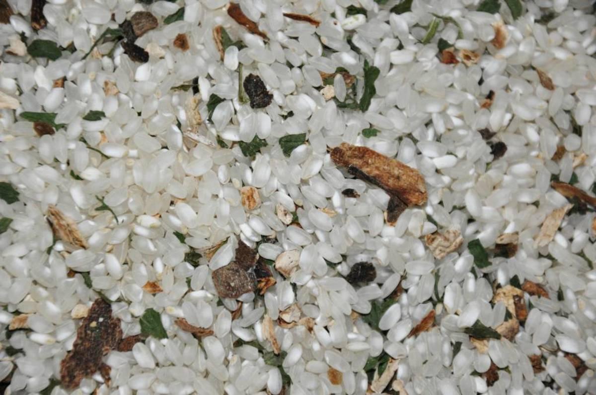 Risotto de boletus con trufa a granel