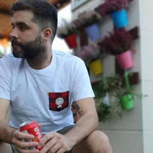 Camiseta Adulto Unisex Pilarica