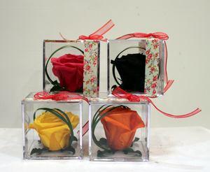 Rosas preservadas en caja de metacrilato