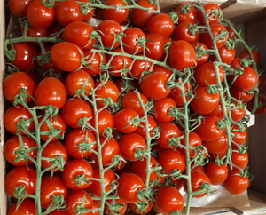 Tomate Cherry 250 gr aprx