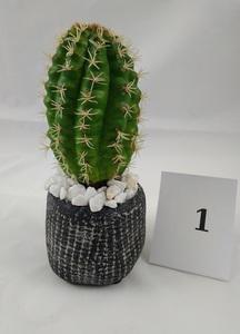 Macetero Cactus (Modelo 1)