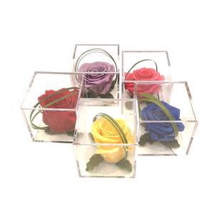 Rosa eterna en cubo - diferentes colores