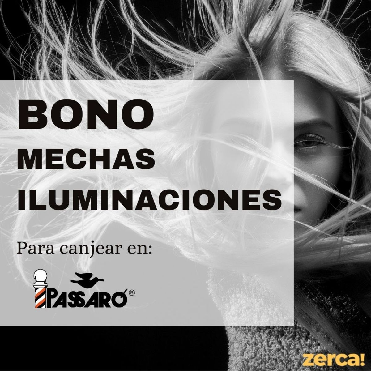 Bono mechas iluminaciones PARA CANJEAR EN PASSARÓ PLAZA SAN BRIZ