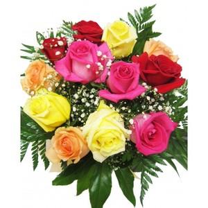 Multicolor Rosas de colores