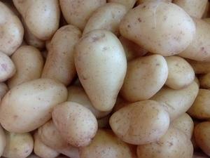 Patata blanca 1 kg aprox