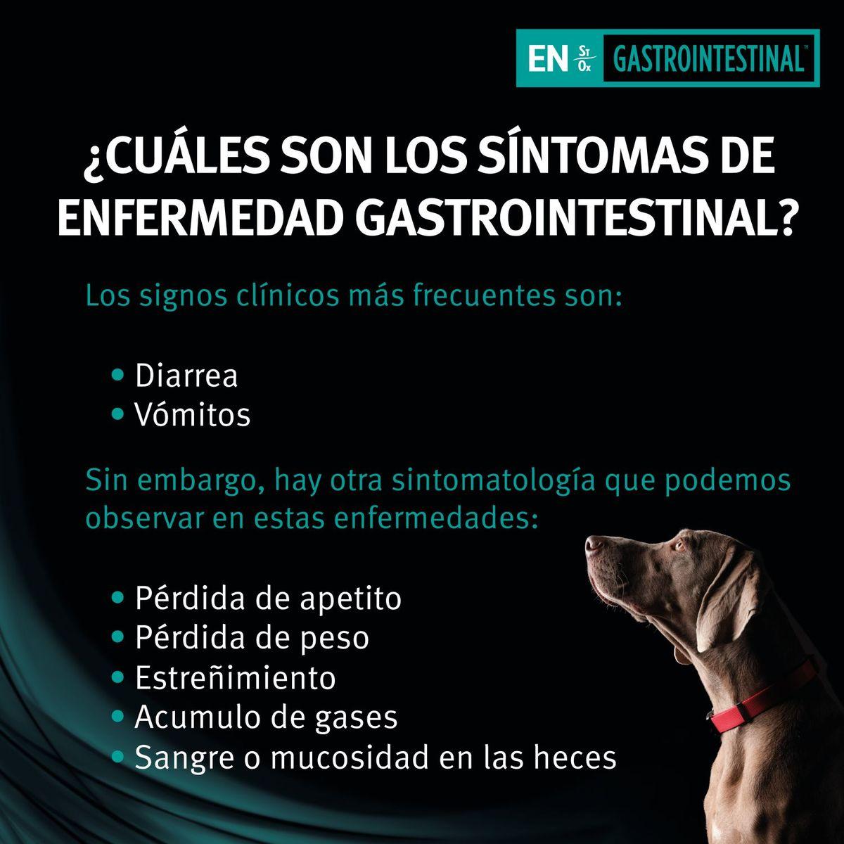 Pro Plan veterinary diets Perro EN gastrointestinal lata 400grs pack 12