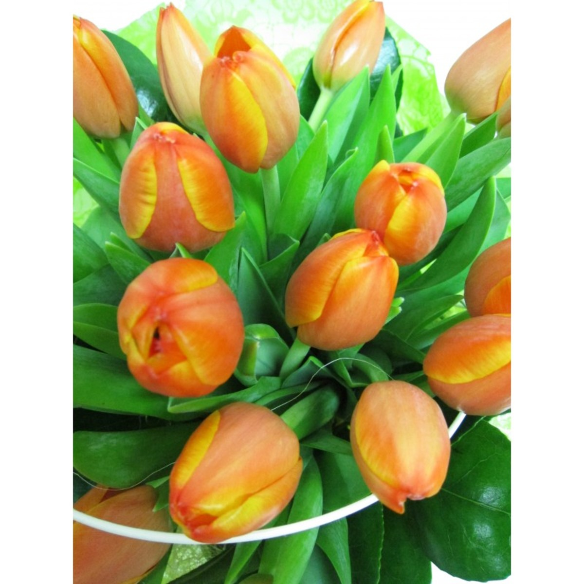 Ramo Holland Tulipanes
