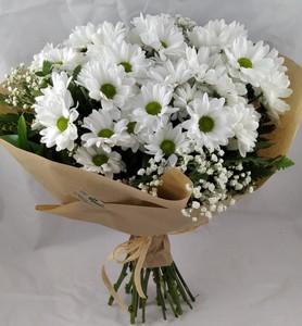 Ramo flor natural: Margaritas blancas