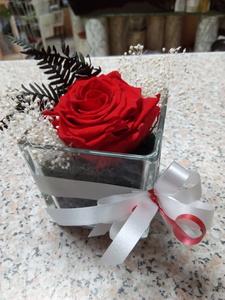Rosa eterna en cubo de cristal