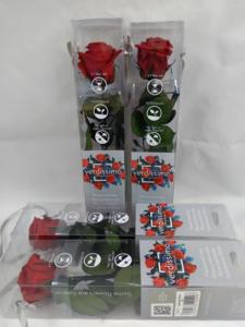 Rosa roja preservada en caja  (pequeña)