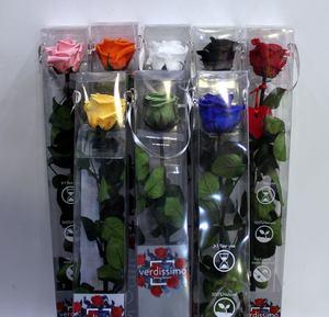 Rosas preservadas largas