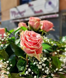 Ramo de 6  Rosas rosas